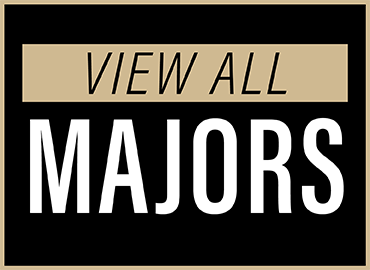 View all majors.