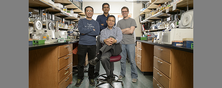 "Discovery made by the Luo Lab selected as a ""Signaling Breakthrough"" of 2016"